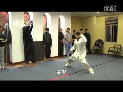youtube tai chi fighting applications